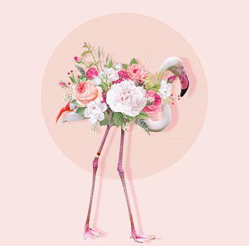 Blooming Flamingo van Rudy & Gisela Schlechter