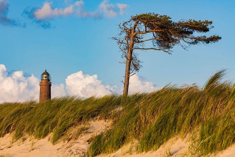 Leuchtturm am Darßer Ort bei Prerow von Werner Dieterich