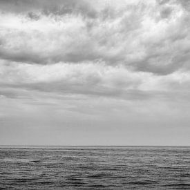 Lonely sur Ruud van Ravenswaaij