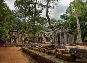 Ta Prohm Tempel, Siem Reap Cambodja van