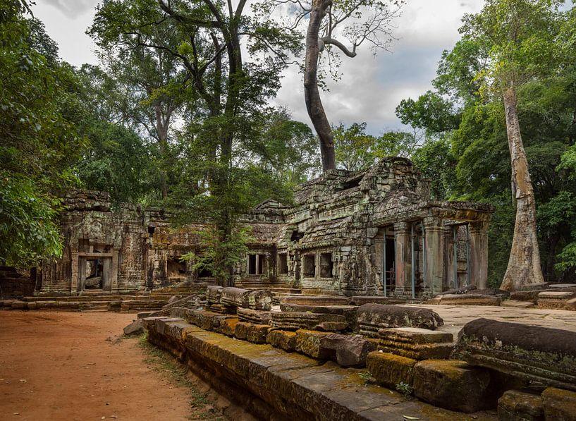 Ta Prohm Tempel, Siem Reap Cambodja van Maurits van Hout