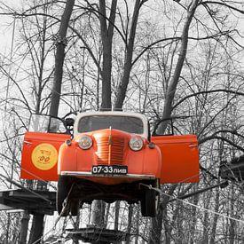 Auto in de boom van zippora wiese