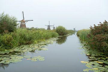 Kinderdijk in holland von Marcel Derweduwen