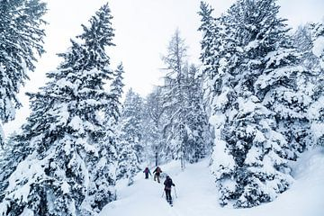 Welcome to Narnia pt 2. van Hidde Hageman
