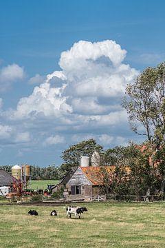 Boerderij in Gaasterland op een zomerdag van