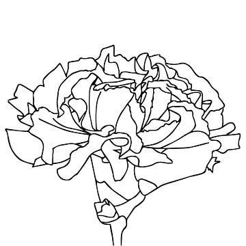 Lineart - Anjer van Mandy Jonen