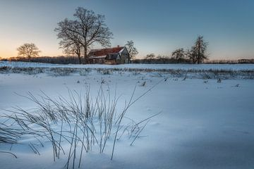 Winterliches Münsterland von Steffen Peters