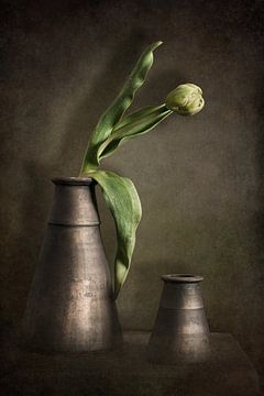 Stilleben mit Tulpe von Danny den Breejen