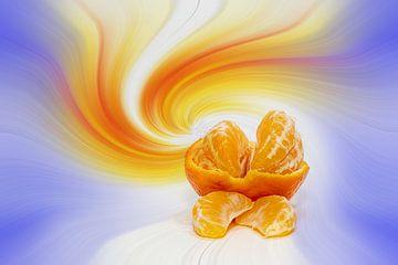 Mandarin vor einem farbenfrohen abstrakten Hintergrund von Harry Adam