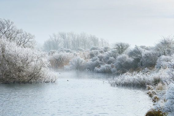 Winter landschap van Menno Schaefer