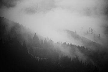 Alpennebel 6 von Bart Rondeel