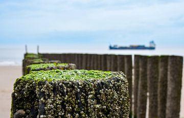 Alte Stangen am Strand von bart hartman