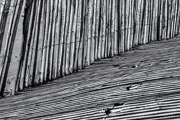 Schaduw in de duinen von Julienne van Kempen