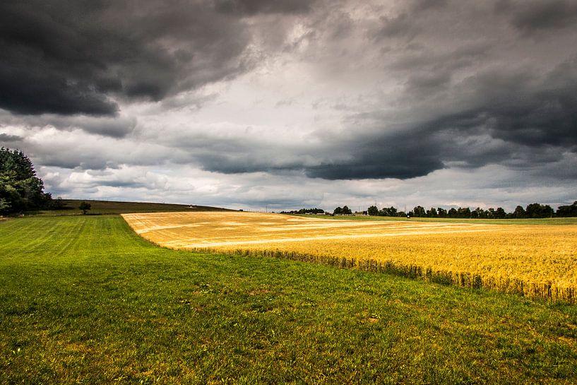 Landschap bij Jünkerath (D) van Ad Van Koppen