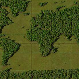 Carte du monde Forêt sur Frans Blok