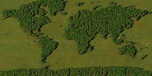 Wereldkaart Bos van Frans Blok