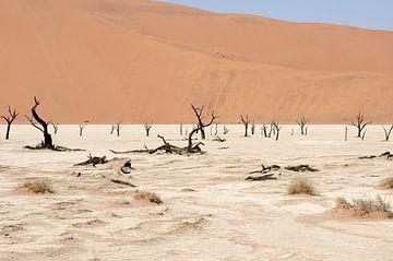 Deadvlei Namibië von Maurits Kuiper