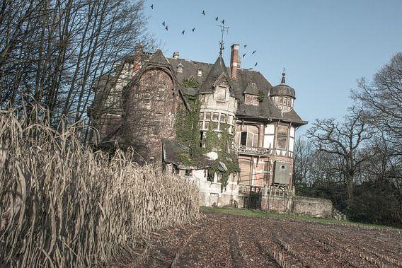 Urbex - Abandoned mansion von Tim Vlielander