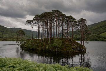 Loch Eilt in Schotland van Tim Vlielander