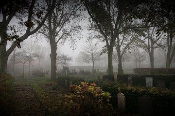 Mist op de begraafplaats van Kloetinge von Desiree Meulemans