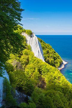 Chalk cliff on the island Ruegen in Germany van Rico Ködder