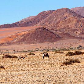 Gemsbokken Namibwoestijn van Inge Hogenbijl