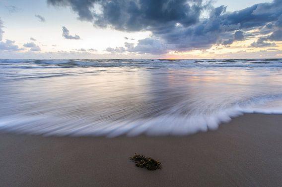 seascape II van Arjan Keers