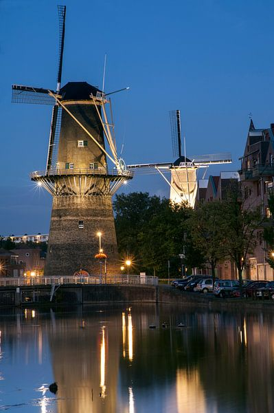 Schiedam, Molen de Noord en de Nieuwe Palmboom van Jan Sluijter