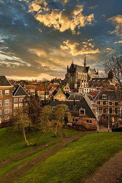 Leiden centrum verticaal van FotoSynthese
