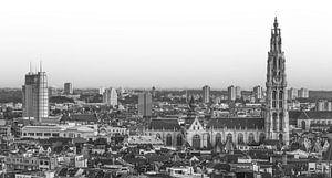 Het stadsgezicht van Antwerpen (panorama)