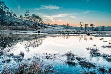 winterlandschap van Joep Deumes