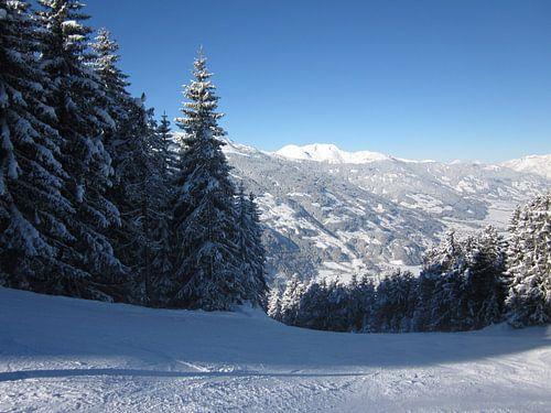 Sneeuw en bergen van