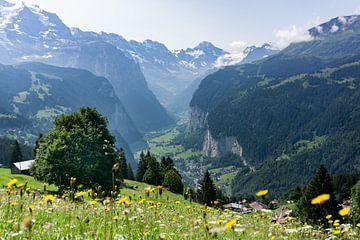 Uitzicht op Lauterbrunnen, Zwitserland van Rianne van Baarsen