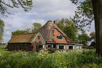 Typisch Nederland von Brian Morgan