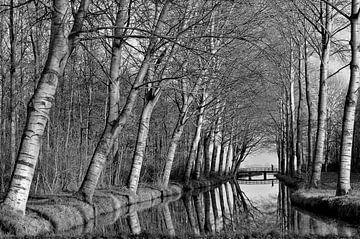 Wandelaar loopt over een brug  van Leo Huijzer