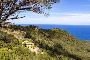 Schilderachtig uitzicht op de kustlijn in het noorden van Mallorca tussen Valldemossa en Bayalbufar van Reiner Conrad
