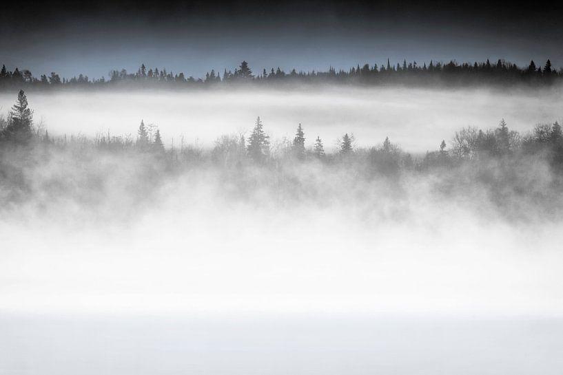 Morning Mist  van Renald Bourque