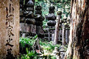 Okunoin's cemetery, Koyasan van