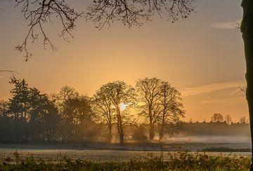 Sonnenaufgang in Renkum von Tania Perneel