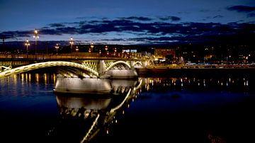 Brug in Budapest van Willem van den Berge