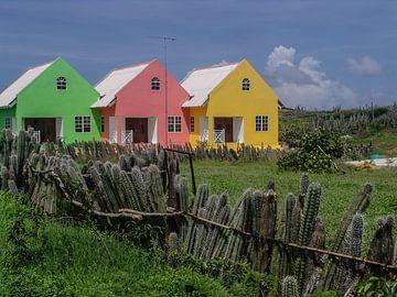 Curaçao von Eric van Nieuwland