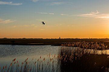 Sonnenuntergang niederländische Landschaft Eempolder von Mark de Weger