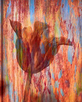Tulpe von Freddy Hoevers