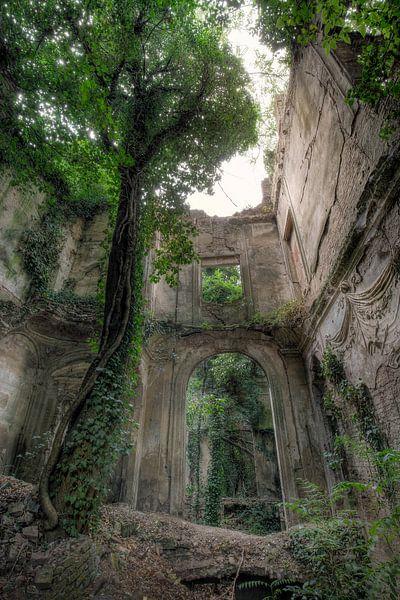 Ruine Baumhaus von Kristof Ven