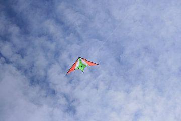 Vlieger in de lucht sur Toekie -Art
