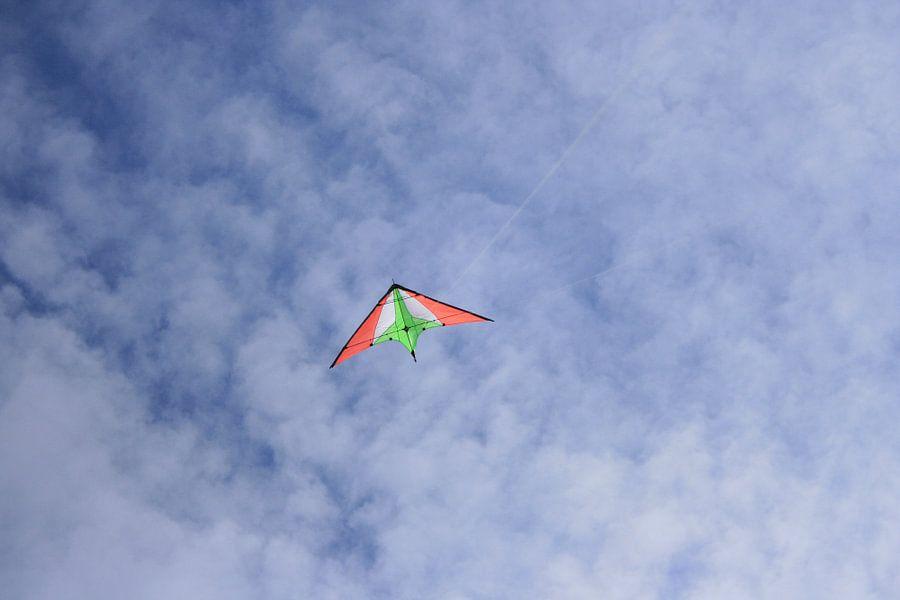 Vlieger in de lucht van Toekie -Art