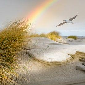 Strand van Terschelling van Gerard Wielenga