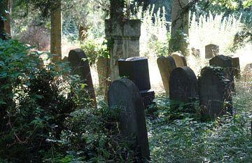 Zentralfriedhof 4  van Ilona Picha-Höberth