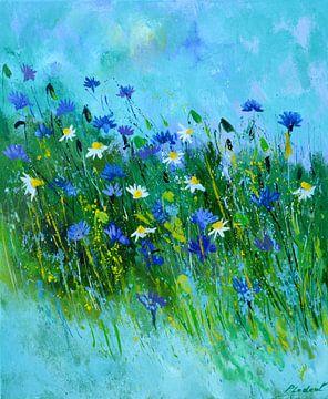Blauwe korenbloemen van