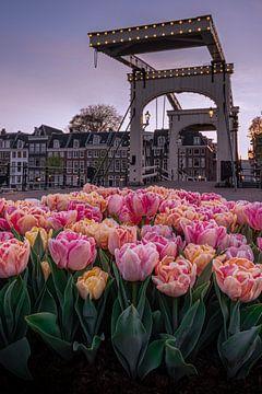 Die schlanke Brücke mit Tulpen im Vordergrund von Thea.Photo